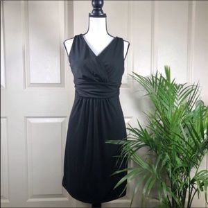 Ann Taylor Petite Sleeveless Sheath Dress